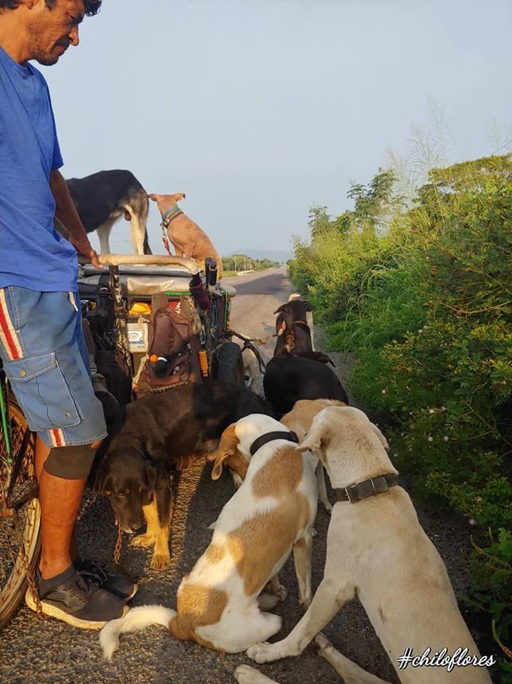 Edgardo y sus perros