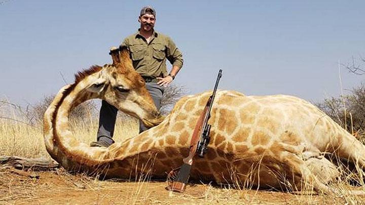 Fischer y la jirafa