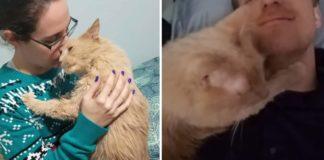 Gatito que fue rescatado de un refugio se aferra a sus nuevos padres