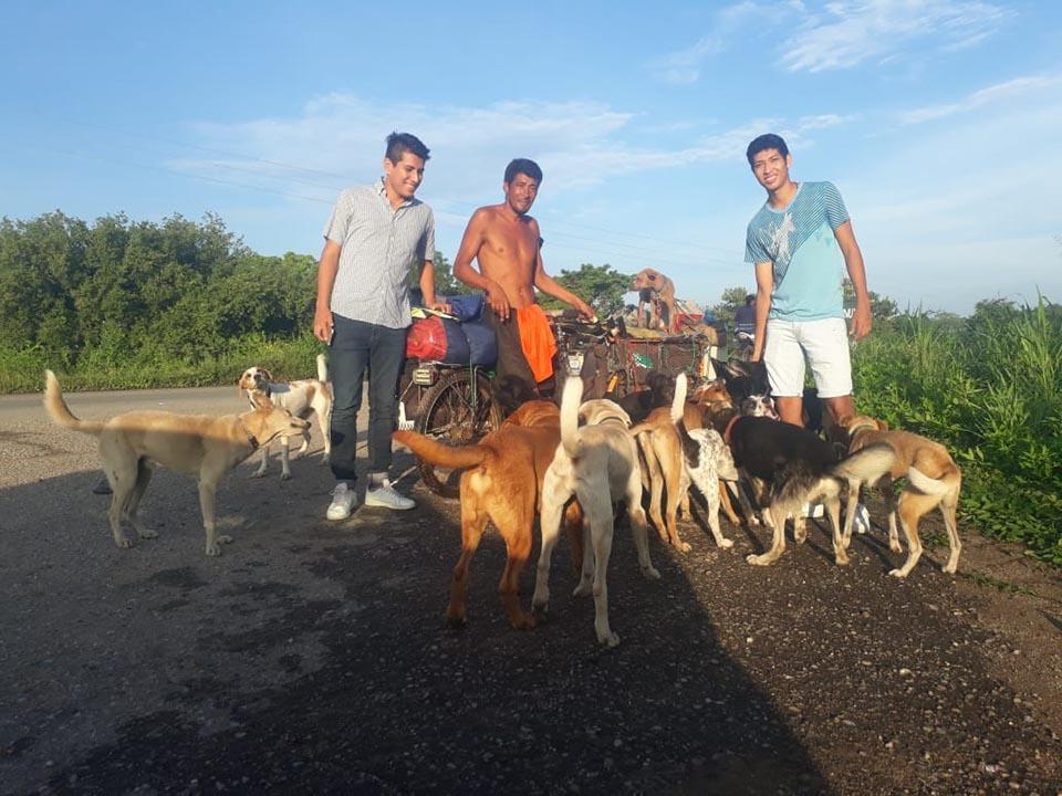 Hombre rescata perros en su triciclo