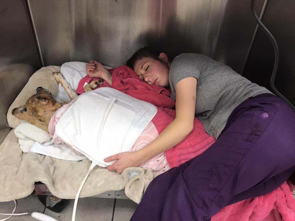 Martin duerme con Taka