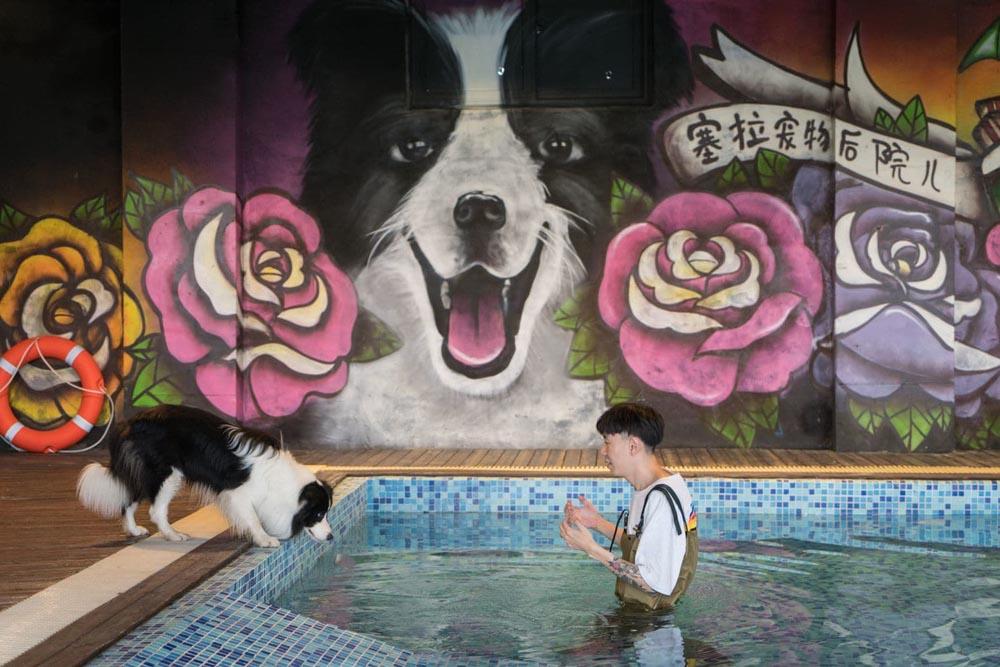 Mural con la cara de Sylar