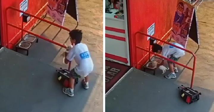 Niño carga perrito en su mochila para llevarlo a lugar seguro