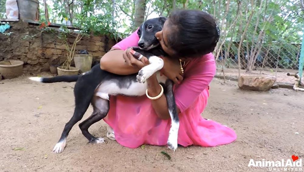Perro recibe amor
