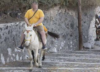 Turistas pesados se les prohíbe montar en burros