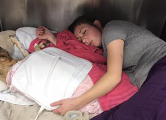 Veterinaria duerme junto a un perrito que sufrió graves quemaduras