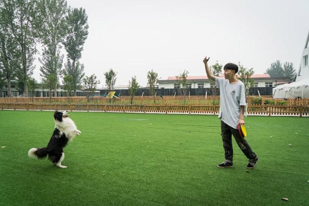 Zhou y Sylar