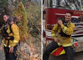 Bombero rescató a un gatito de un incendio y se convierten en los mejores amigos