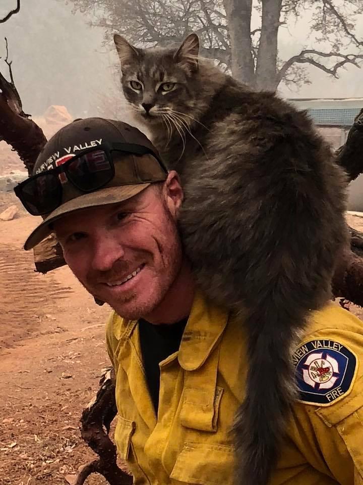 Ryan y el gato