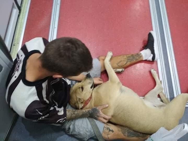 Hombre sin hogar y su perro