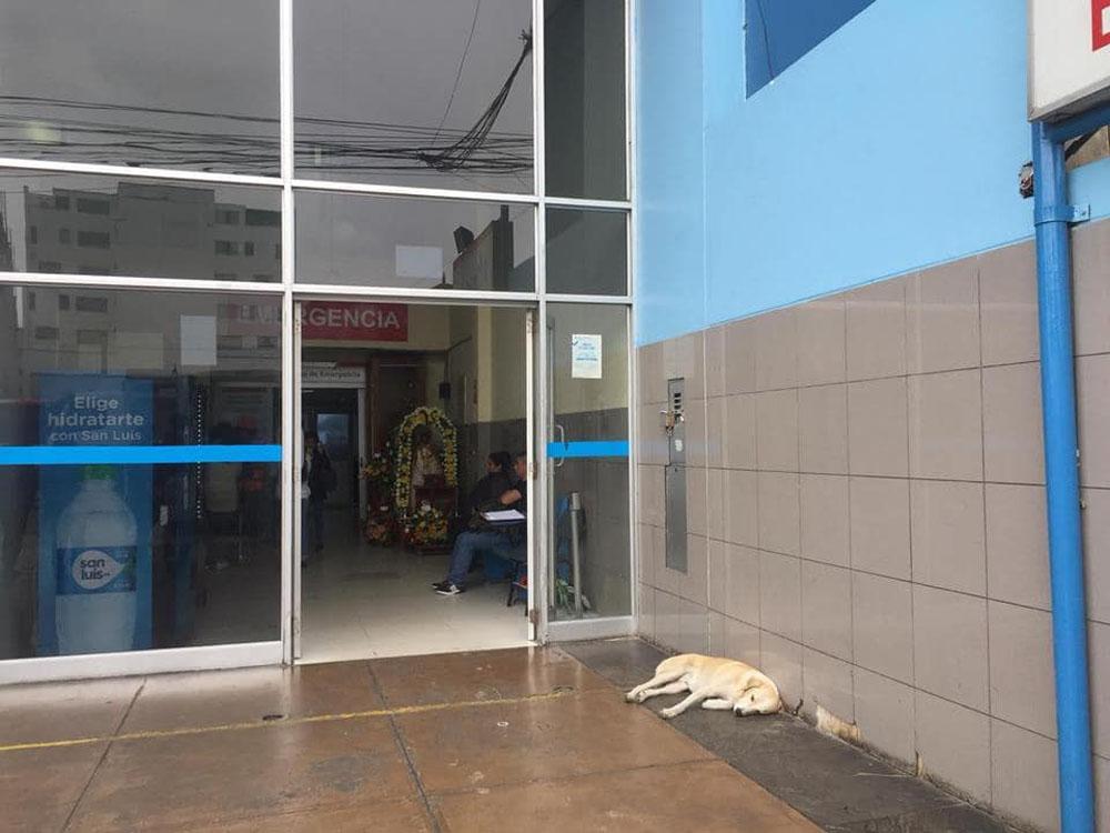 Ramsés afuera del hospital