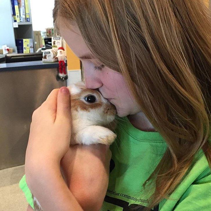 Conejo da besos