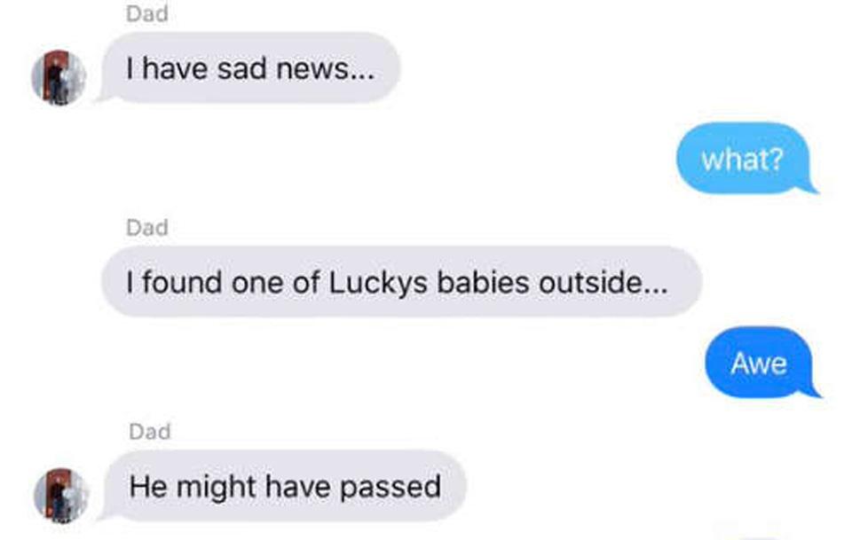 Conversación de Terry y su hija