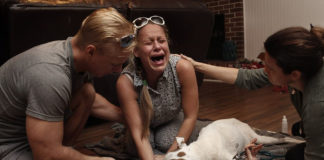 Fotos desgarradoras de animales de compañía en sus últimos momentos