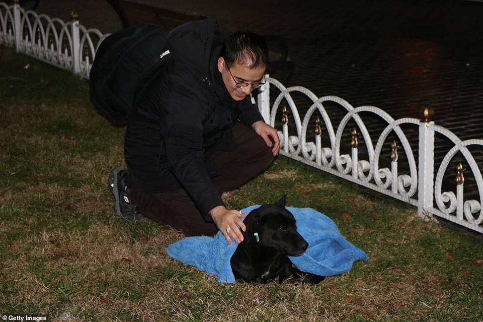 Huseyin Yurtseven abrigando un perro