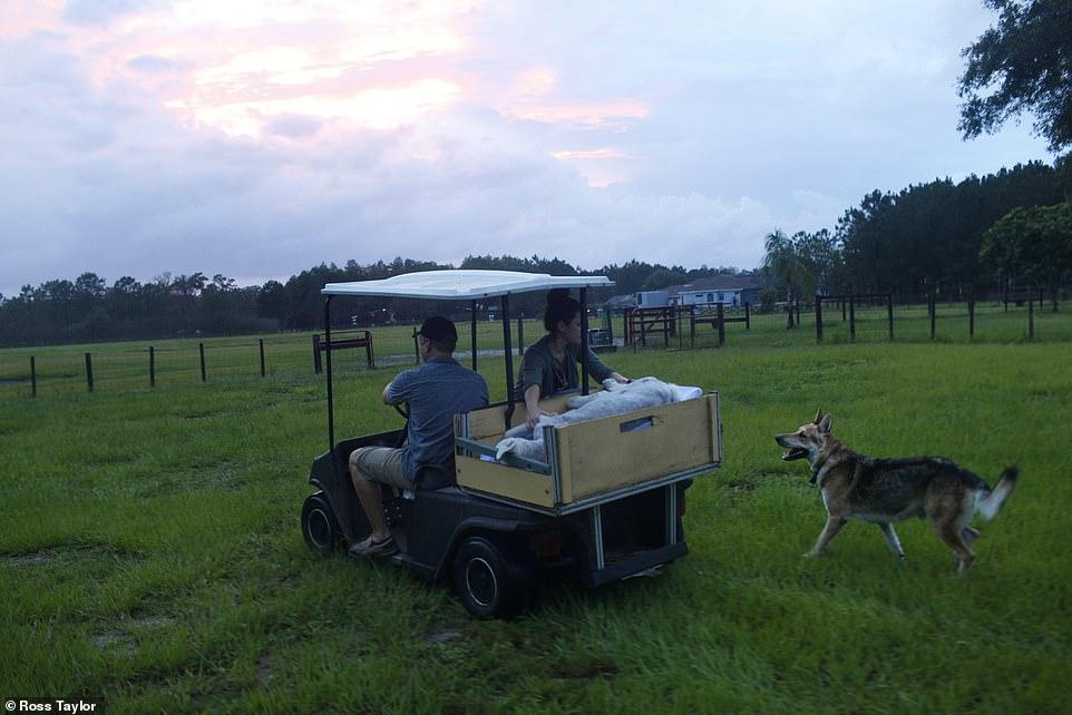 Kai sigue el carro que lleva a su amiga Asia