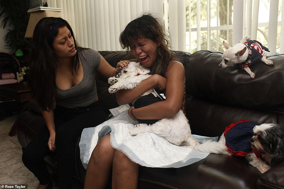 Kiara Manrique llora la muerte de su perro