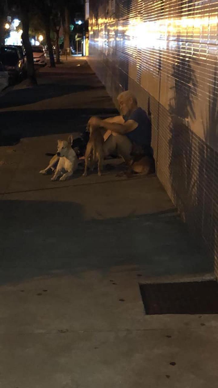 Luiz y sus perros