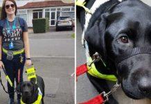 Mujer ciega fue presionada para que sacara a su perro guía del autobús