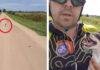Ciclista encuentra a un indefenso cachorro abandonado en carretera rural