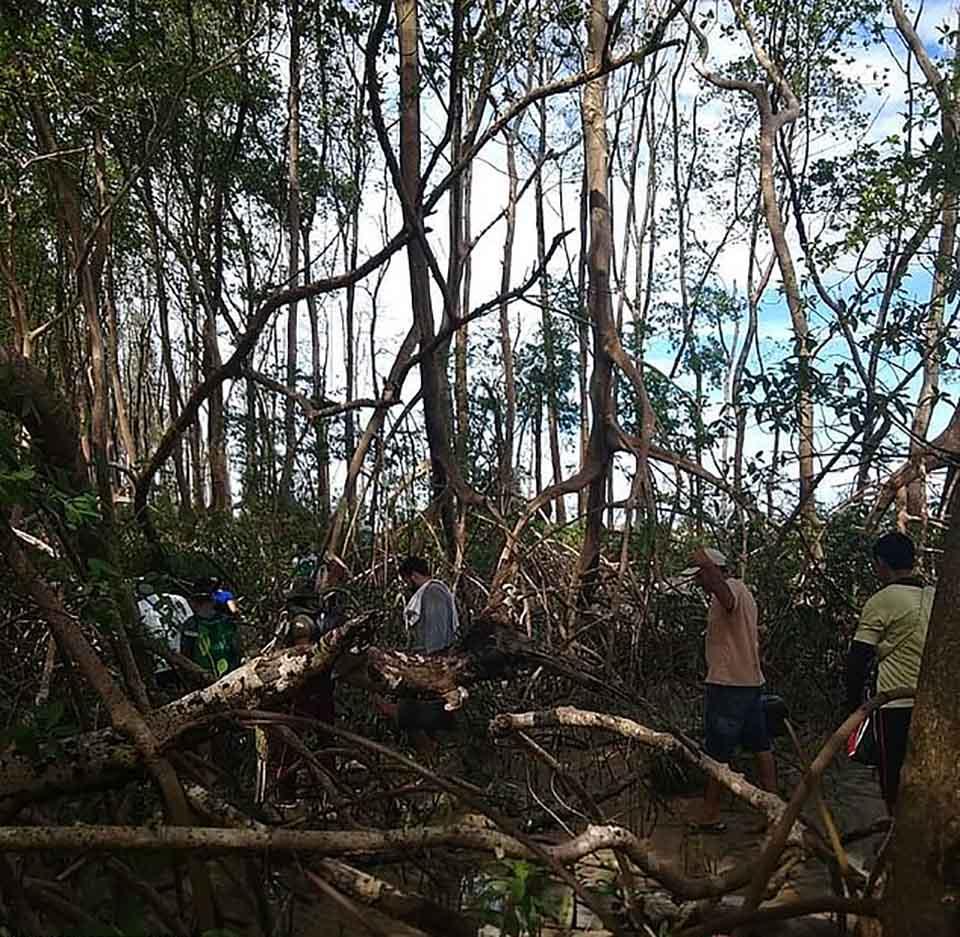 En busca de la ballena muerta en selva amazonica