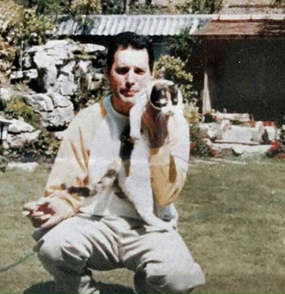 Freddie Mercury amaba a cada uno de sus gatos