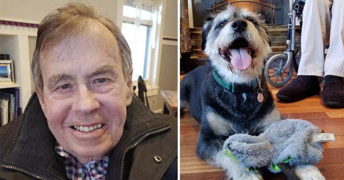 Hombre con ELA espera encontrar un hogar para su amado perro