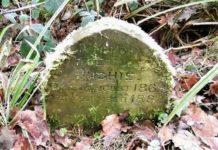 Hombre encuentra lápida en medio de un bosque con un dulce mensaje