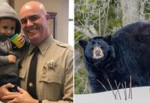 Niño pequeño perdido es salvado por un oso