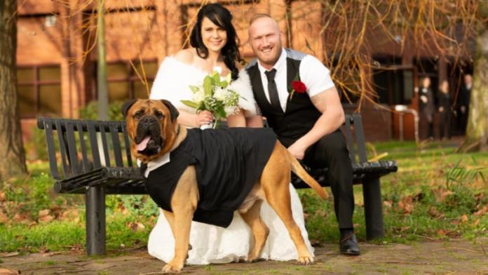Pareja adelanta la fecha de su boda para que su perro los acompañe