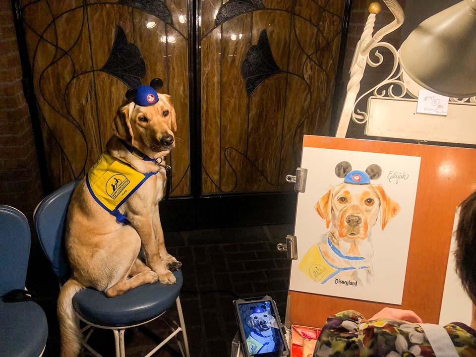 Perro retrato