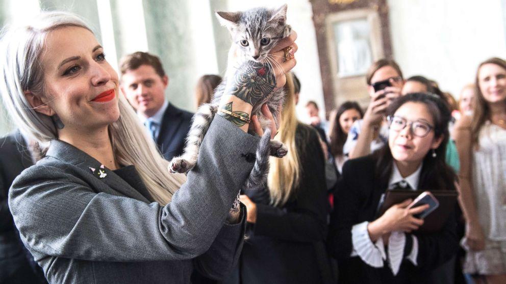 Activista y animalista amante de los gatos