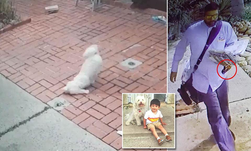 Cartero es captado en cámara rociando a un perro con spray de pimienta