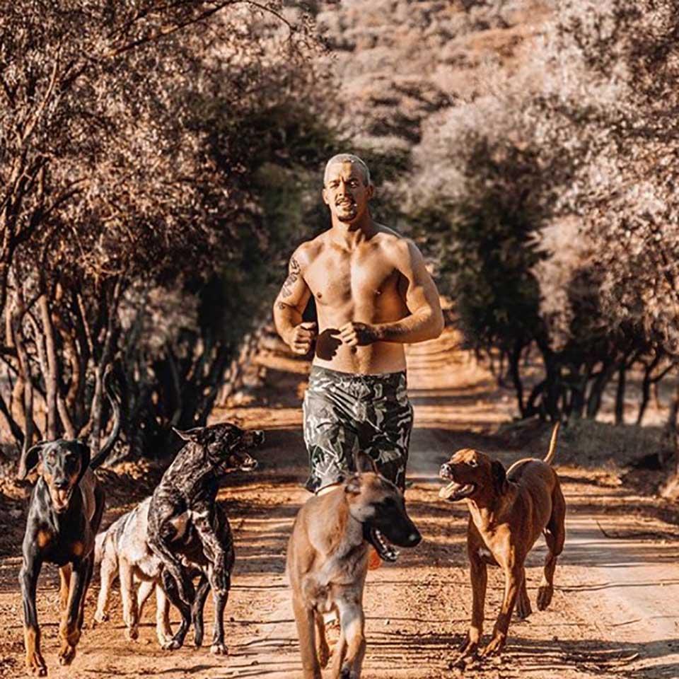 Dean Schneider y animales salvajes