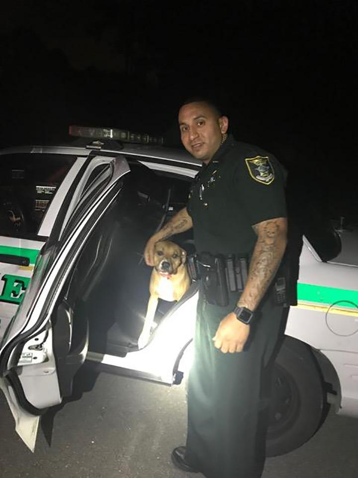 Hank sube al auto de policía