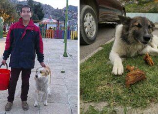Hombre dejó su trabajo para alimentar a animales que habitan en la calle