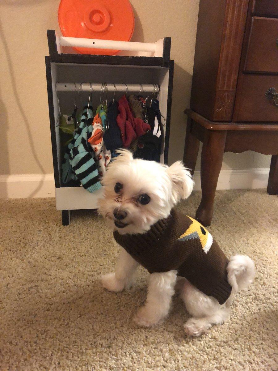 Pluto con su ropa
