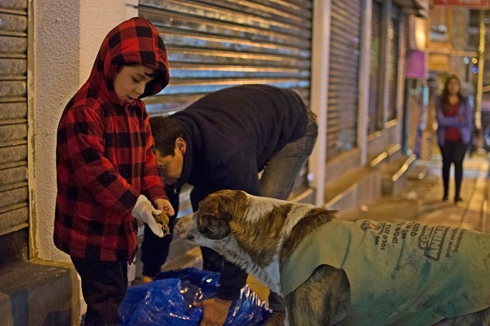 Hombre brinda ayuda a perro que vive en la calle