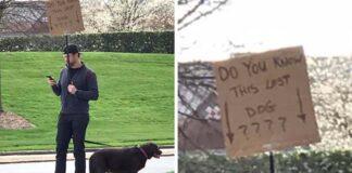 hombre hace todo lo posible para encontrar a la familia del perro que salvo