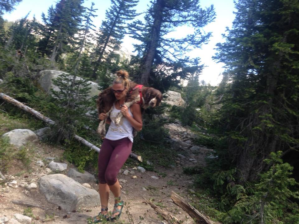 Mujer alza a perro herido desde la montaña