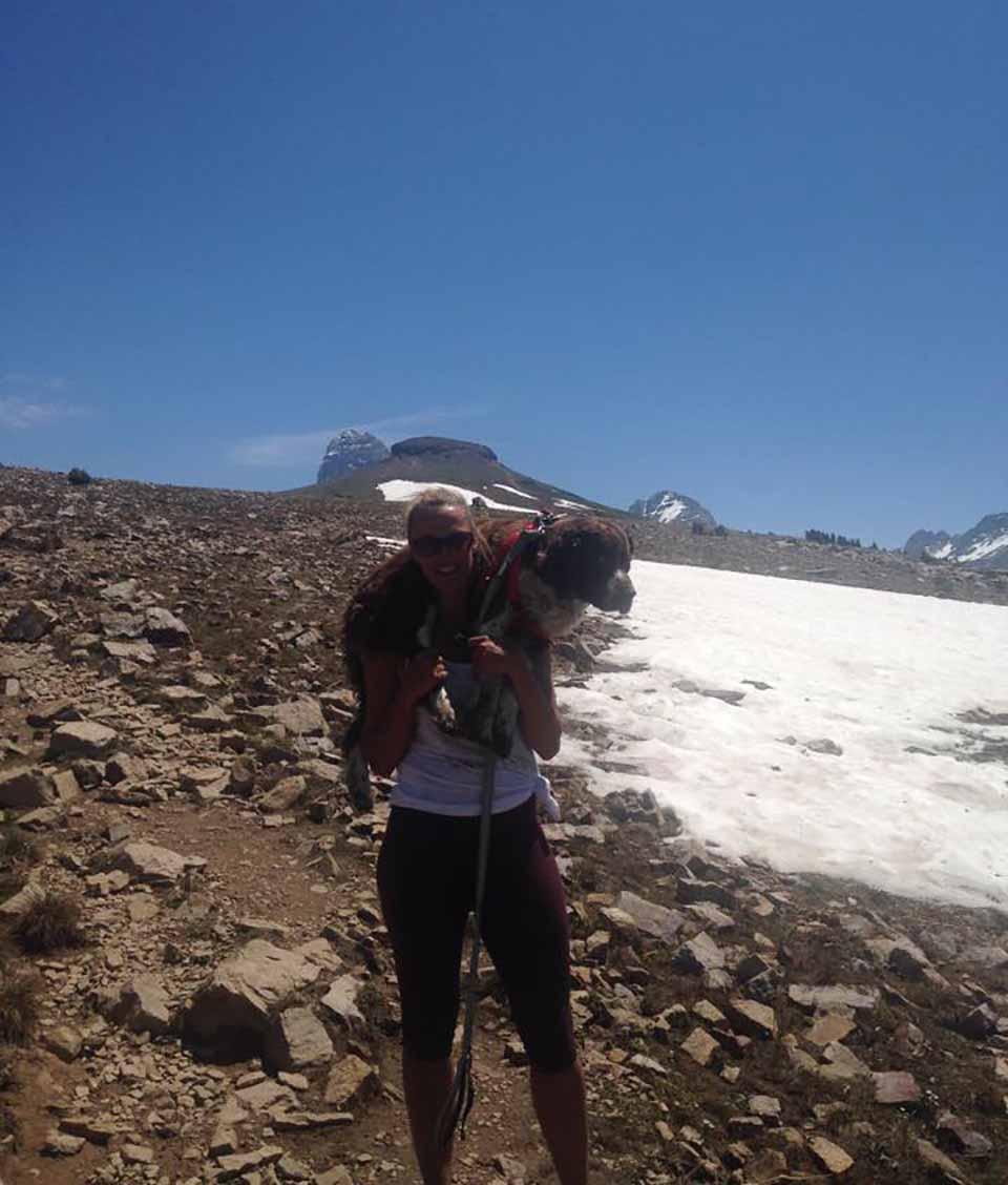 Mujer ayuda a perro encontrado en la montaña