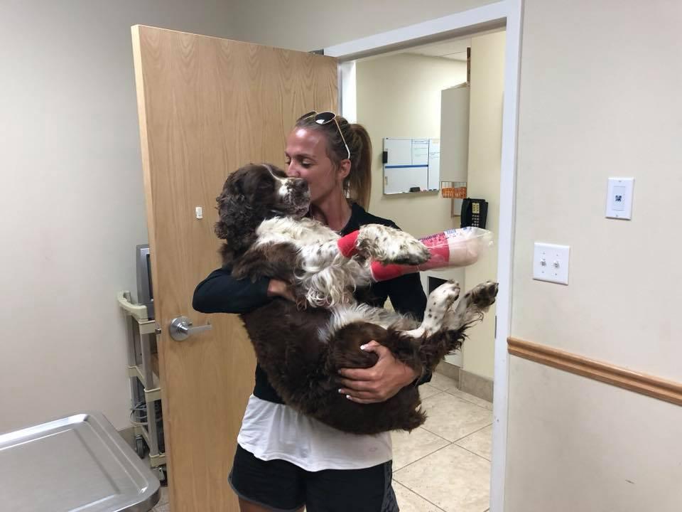 Mujer sostiene perrito en veterinaria