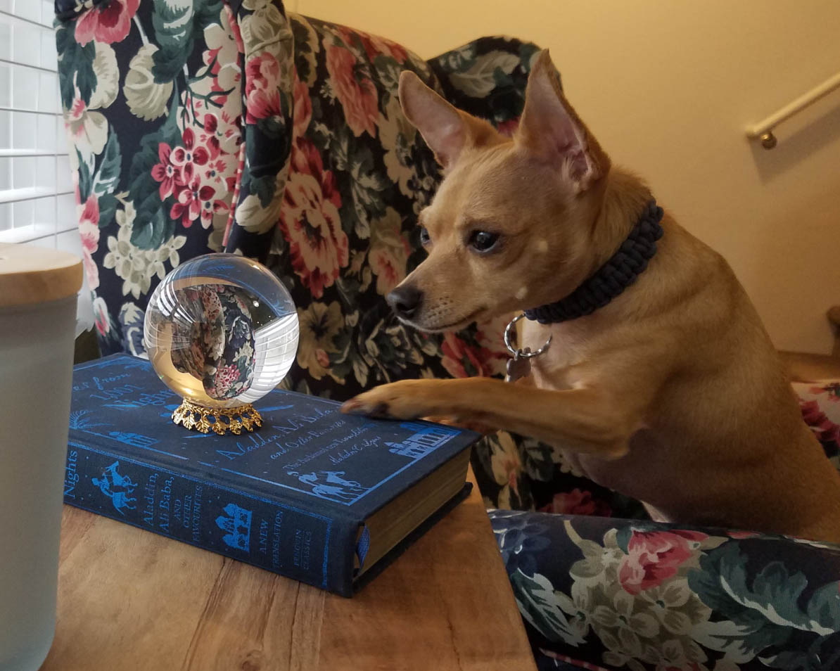 Baja viendo la bola de cristal