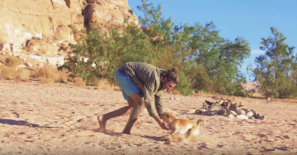 Hombre juega con perrito en desierto