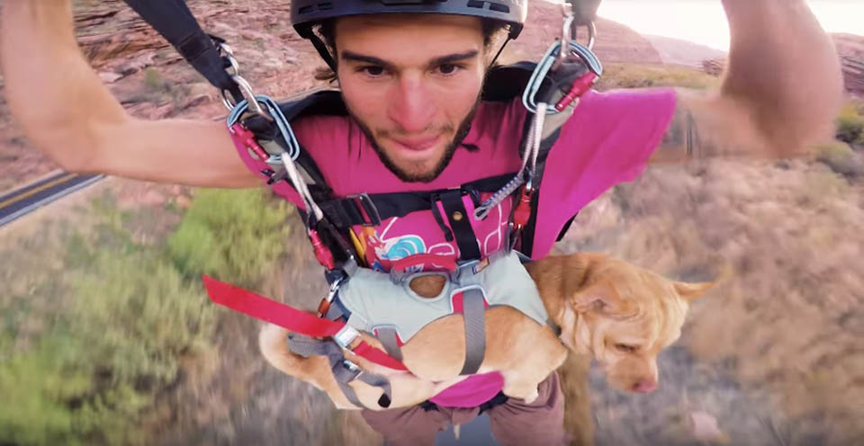 Hombre y perro en paracaídas