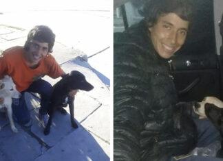 Joven argentino adopta dos perros en Chile y regresa con ellos a dedo