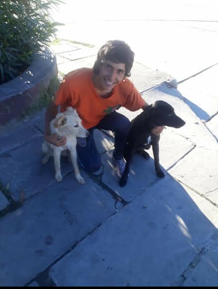 Lucas y sus perros