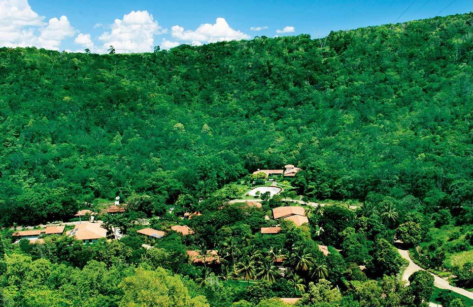Sebastião y su esposa Lélia plantaron 2 millones de árboles durante 20 años