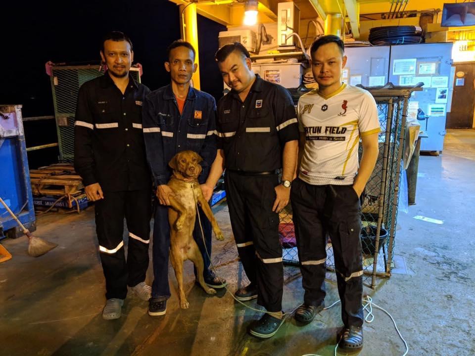 Trabajadores y perrito rescatado