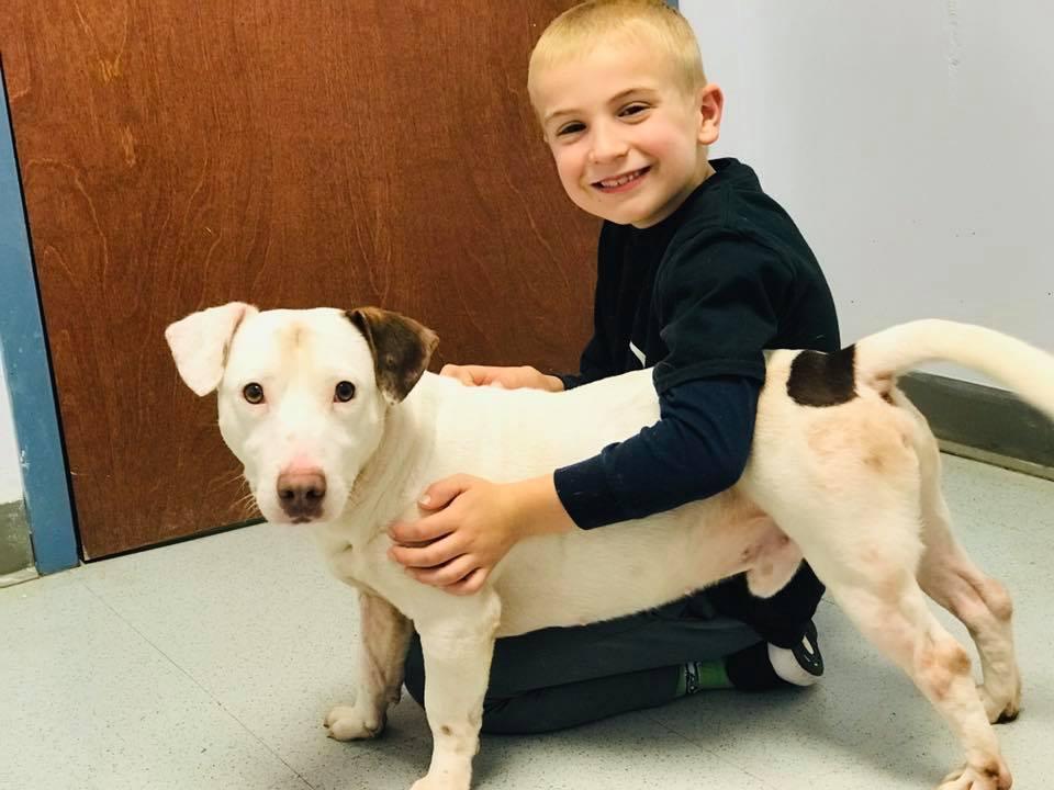 Niño que rescata animales sostiene a lindo perrito